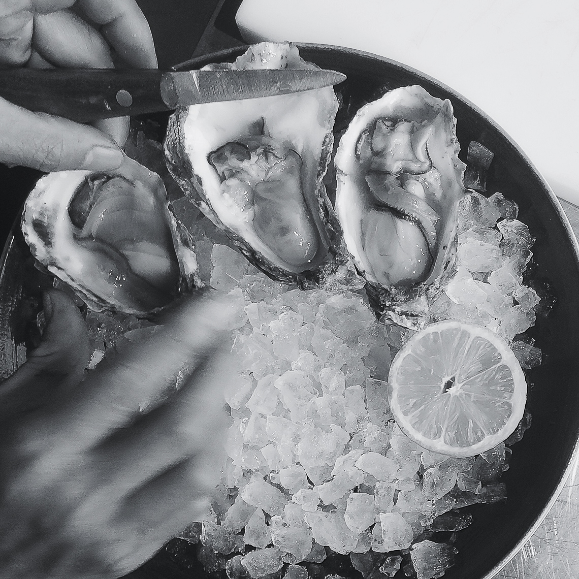oysters-food-3222